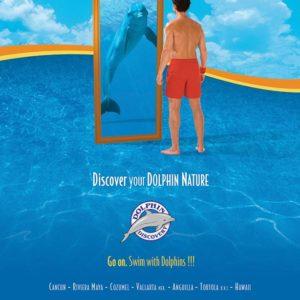 Jorge-Carlos-Alvarez-Dolphin-Discovery