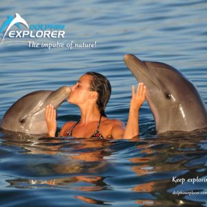Jorge-Carlos-Alvarez-Dolphin-Explorer